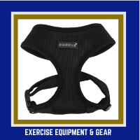 Exercise equipment and gear for Shihpoos